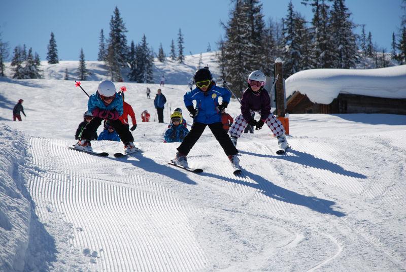Fageralm / Forstau - Ski amade